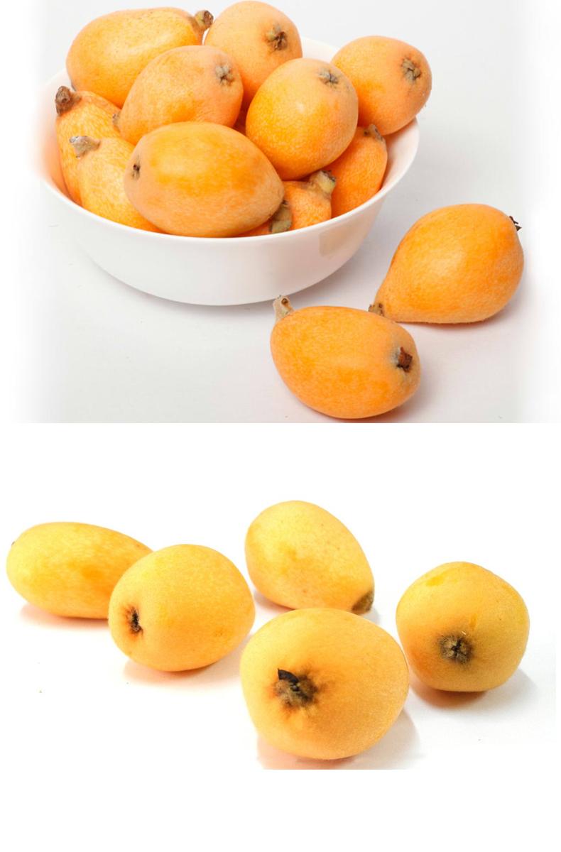 水果琵琶切面图